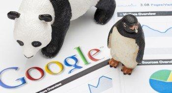 Panda i Pingwin Google