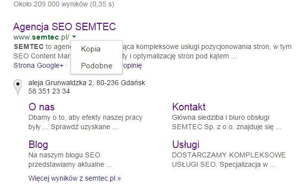 a9e70a38bd5fa Pamięć podręczna wyszukiwarki co to jest  Definicja w słowniku SEO