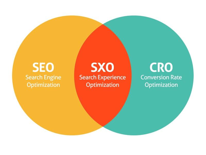 Zakres jaki obejmuje pojęcie Search Experience Optimization